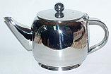 Заварочный чайник VICALINA 0.6 мл, фото 2