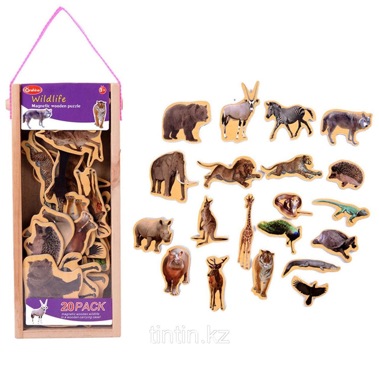 Деревянные магнитные животные, 20 штук