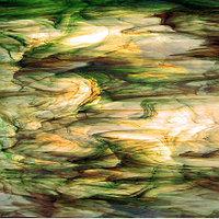 Clear/White/Green/Brown, «Rainforest»