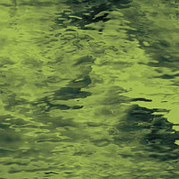Olive Green Waterglass