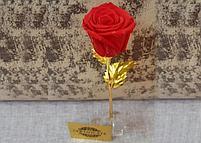 Вечная живая Роза на золотом стебле, фото 2