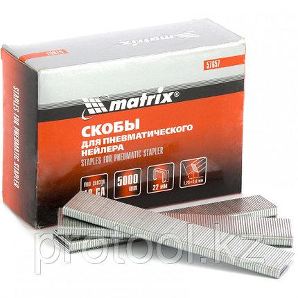 Скобы 18GA для пневматического степлера 1,25х1,0мм длина 22 мм ширина 5,7 мм, 5000 шт. MATRIX, фото 2