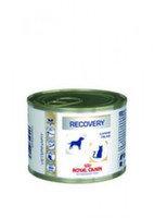 Royal Canin  Recovery Роял Канин для кошек после операции (интенсивная терапия) 195 гр