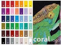 Входные системы грязезащиты Forbo Coral Logo