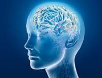 Для мозговой активности