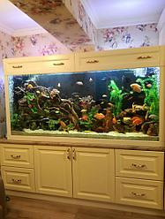 Тумба и обрамление под аквариум