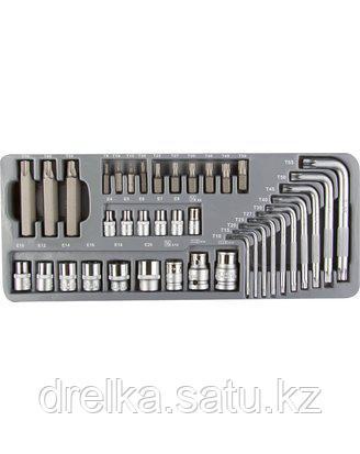Набор бит для шуруповерта ЗУБР 2654-H40_z01, биты специальные, головки, ключи TORX в металлическом боксе