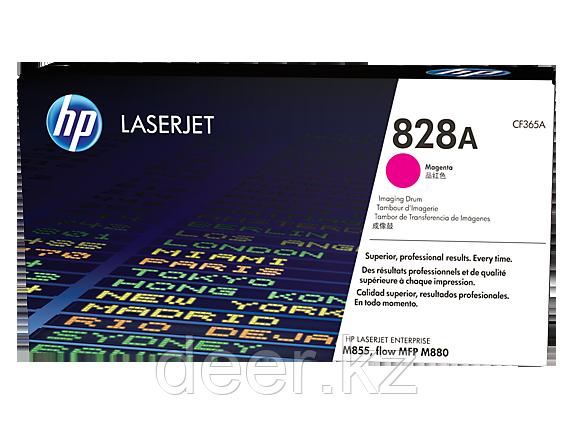 Картридж лазерный HP CF365A Dram, для принтеров HP ColorLaserJet M855XH series, пурпурный
