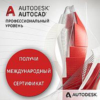 Курс AutoCAD. Профессиональный