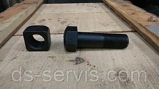 Болт с гайкой башмачные (М24х1,5х79)