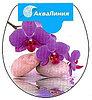 Сиденье для унитаза орхидея
