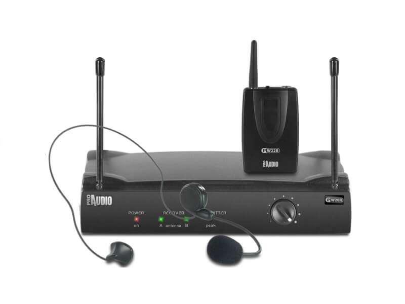 Радиомикрофон PROAudio PW220