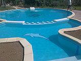 Проектирование и строительство бассейнов Дежуайо Desjoyaux в Казахстане по французским технологиям от 15 дней, фото 5