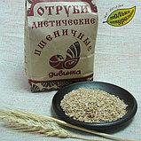 Отруби пшеничные, 350 гр, фото 2