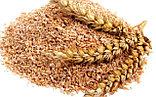 Отруби пшеничные, 350 гр, фото 3