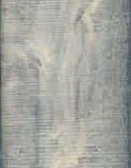 Ламинат Eurohome, коллекция Majestic, Дуб битник