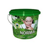 Эмульсия протирающиеся Alina Paint Norma (Eco) 15 кг