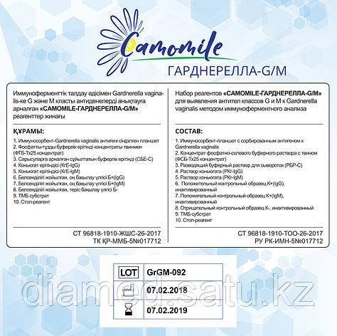 ИФА реагенты CAMOMILE-Гарднерелла-G/М, фото 2