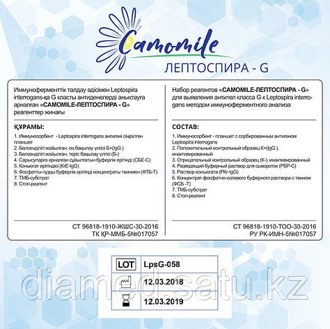 ИФА реагенты CAMOMILE-Листери-О-G, фото 2