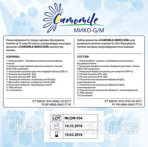 ИФА реагенты CAMOMILE-Мико-G/М, фото 2