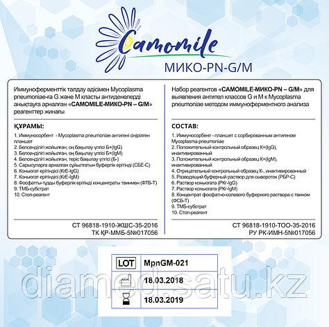 ИФА реагенты  CAMOMILE-Мико-PN-G/М, фото 2