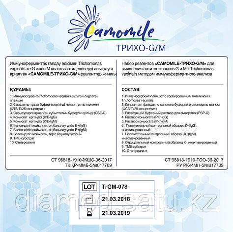 ИФА реагенты CAMOMILE-Трихо-G/М, фото 2