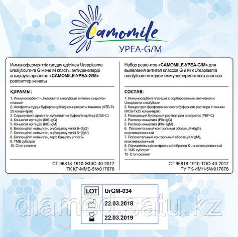 ИФА реагенты CAMOMILE-Уреа-G/М, фото 2