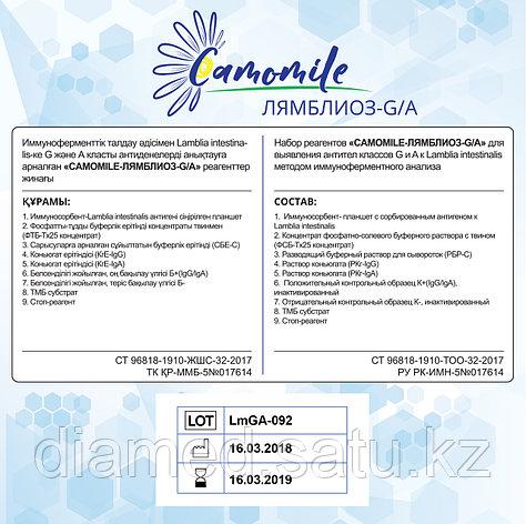 ИФА реагенты CAMOMILE-ЛЯМБЛИОЗ-G/А, фото 2