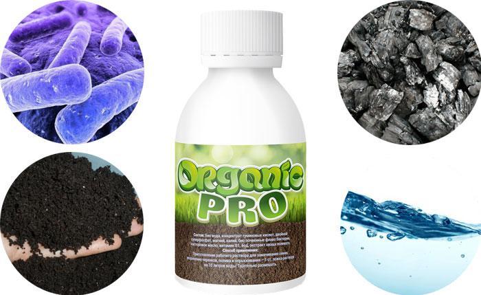 Organic Pro (Органик Про) - удобрение для повышения урожайности