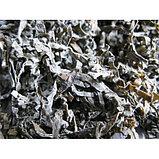 Ламинария сушеная 100 гр, фото 3