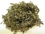 Ламинария сушеная 100 гр, фото 4