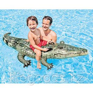 """Детский надувной плотик """"Настоящий аллигатор"""" 170х86 см, Intex 57551, фото 2"""