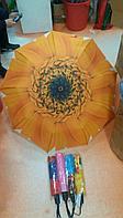 Зонт складной (полуавтомат), фото 1