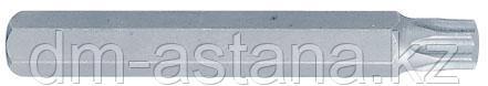 Вставка (бита) торцевая 10 мм, TORX, Т60, L = 80 мм KING TONY 168060T