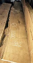 Слэб из карагача 5 (3300 х 480 х 65 мм)