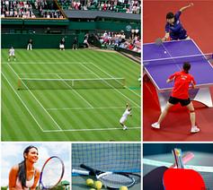 Теннис, большой и настольный