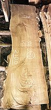 Слэб из карагача 21 (2100 х 520~630 х 65 мм)