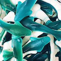 Jellopy Dolphin Shurk/ Дельфины  Акула 0,9кг