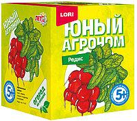 """Юный агроном """"Редис"""""""