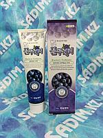 Hanil blueberry toothpaste - Зубная паста с экстрактом черники