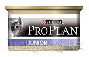 Pro Plan Консервы для котят с курицей, Junior Chicken, 85 гр