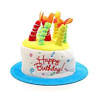 Шляпа на день рождения, торт, 7 свечей.