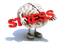Посттравматический стресс - Выход, психологическая помощь , фото 1