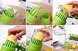 Бутылка Citrus Zinger с соковыжималкой, фото 3
