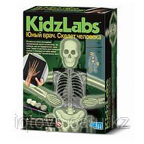 Набор 4M 00-03375 Юный врач. Скелет человека
