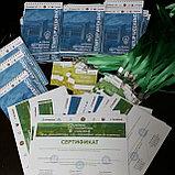 Изготовление визиток, листовок в Астане, фото 3