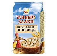 Хлопья Дивинка пшеничные пророщенные 300г