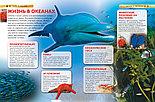 Детская энциклопедия «Моря и океаны» , фото 2