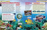 Детская энциклопедия «Моря и океаны» , фото 3