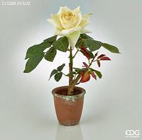 Декоративная роза в горшочке 32 см.